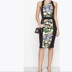 Ted Baker 'Akva Kensington' Bodycon   Dress UK 4